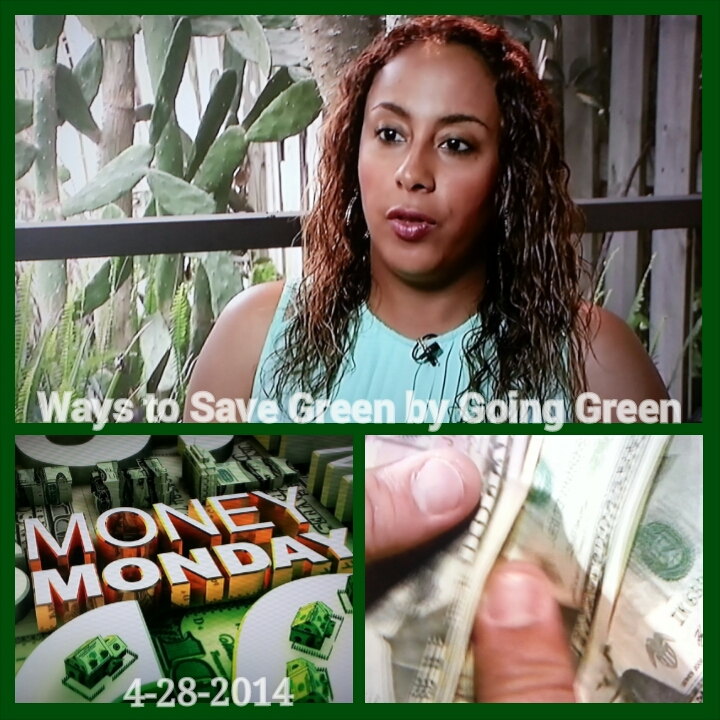 Save Green By Going Green Segment 4-28-14