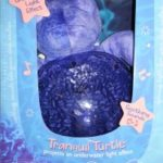 Go Under The Sea with Tranquil Turtle