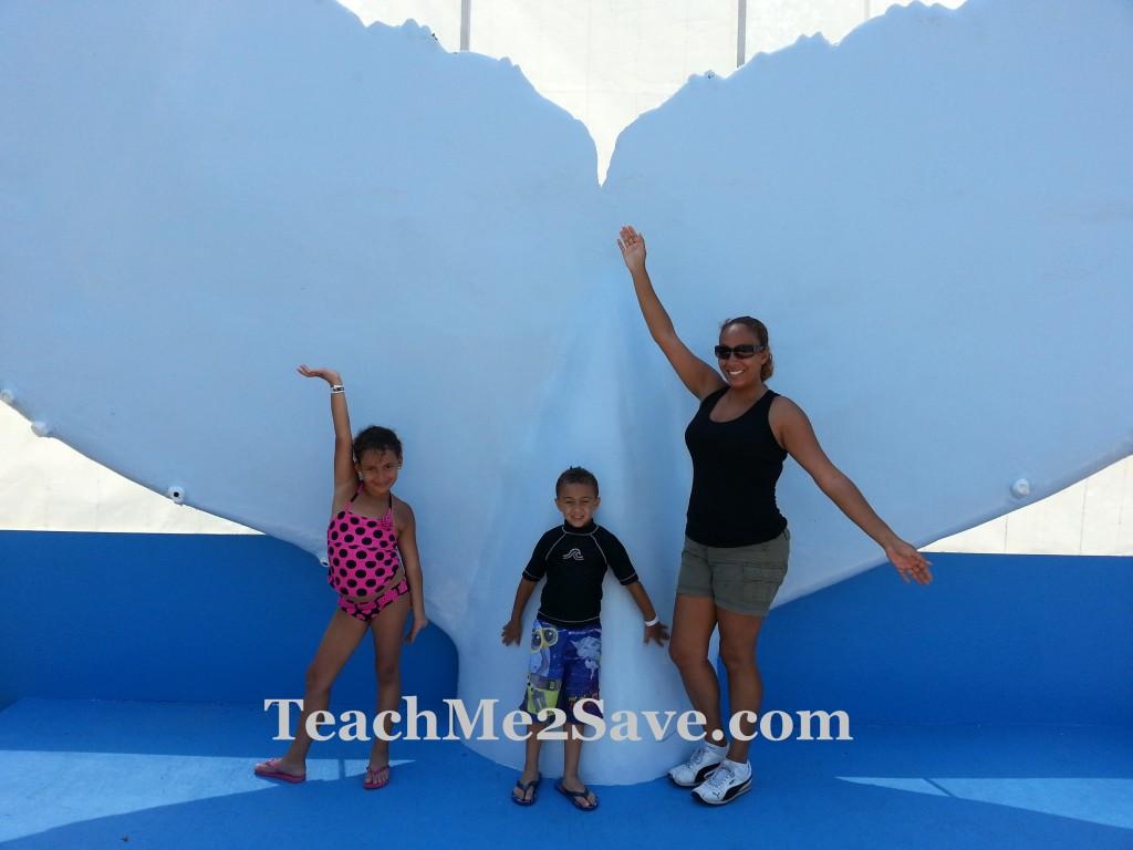 Miami Seaquarium Fun
