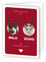 minted.com card 3