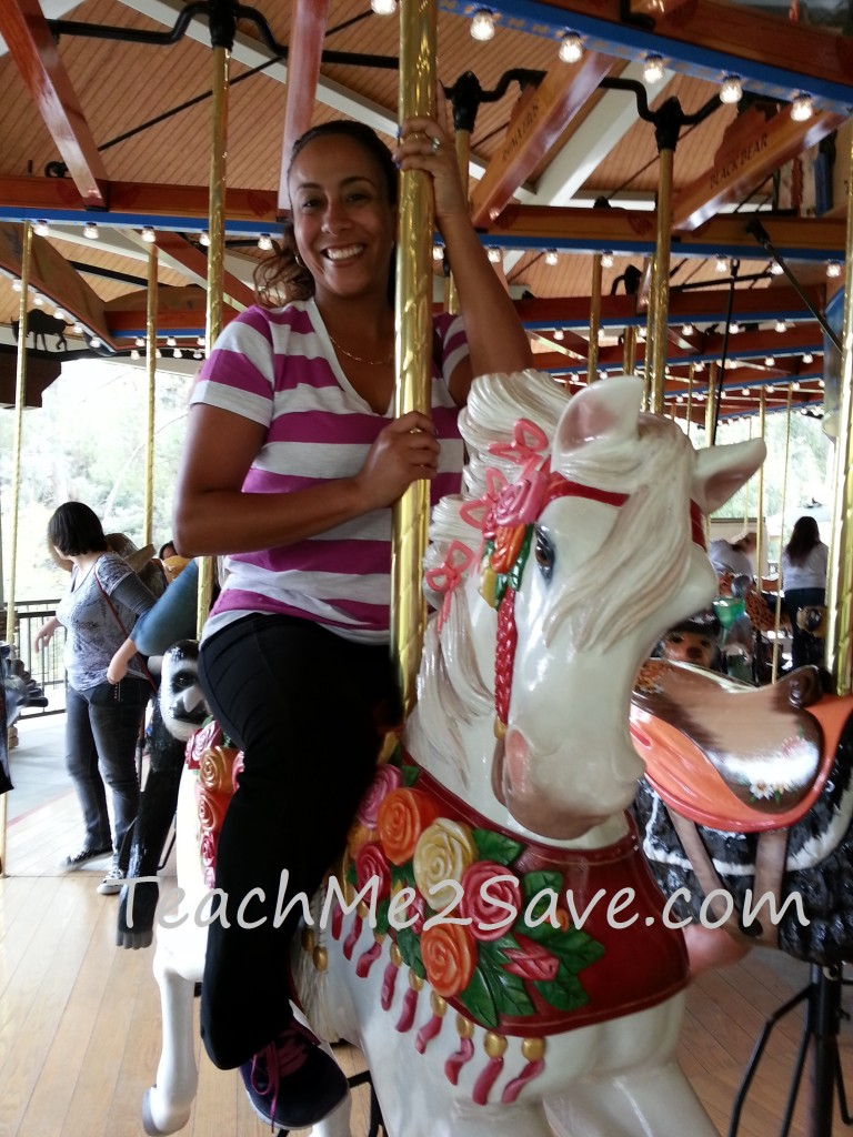 LA Zoo Carousel Ride