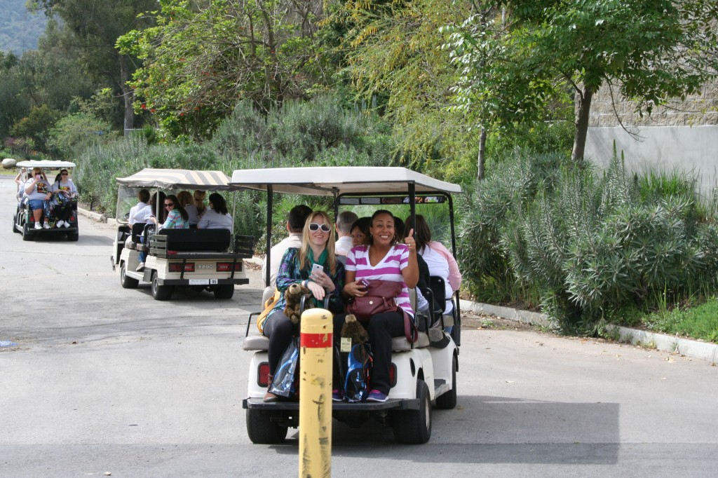 LA Zoo Trams