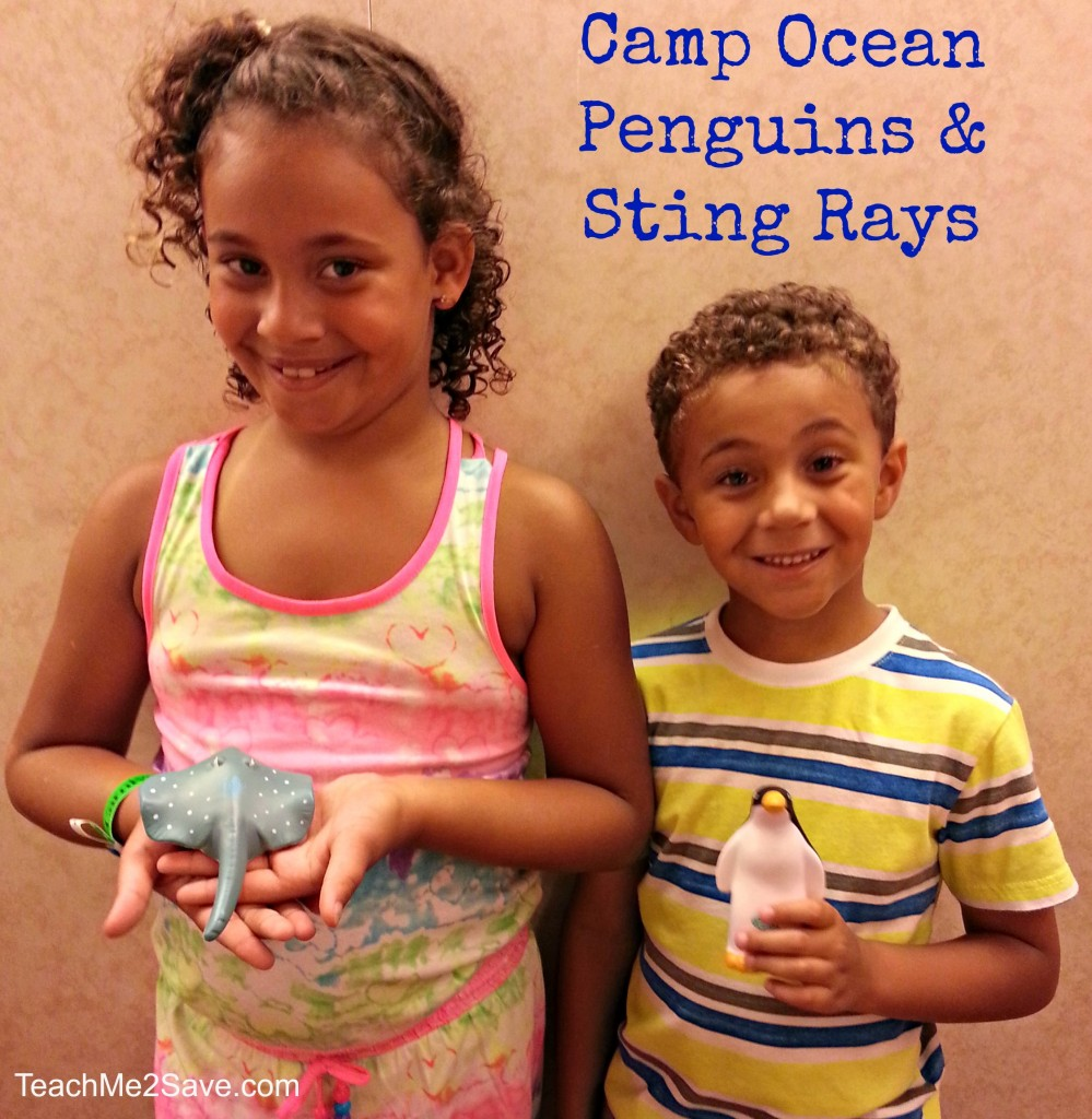Camp Ocean Penguins and Sting Rays