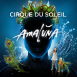 Cirque du Soleil Returns with Amaluna (South Fl. Giveaway)