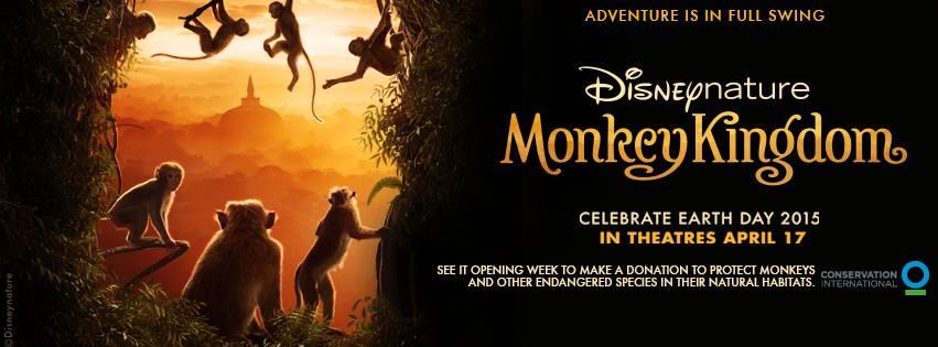 Monkey Kingdom Banner