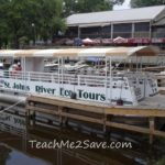 Enjoy The Beauty of Animals and Nature Aboard St. John's River Eco Tours