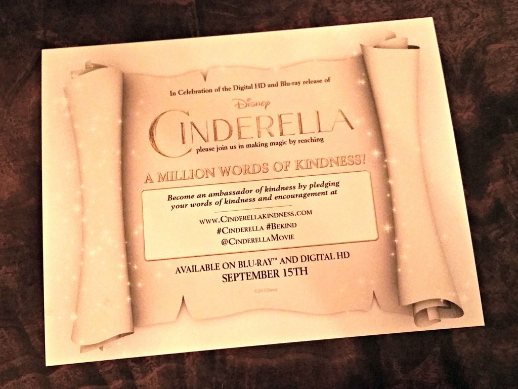 cinderella a million words of kindness