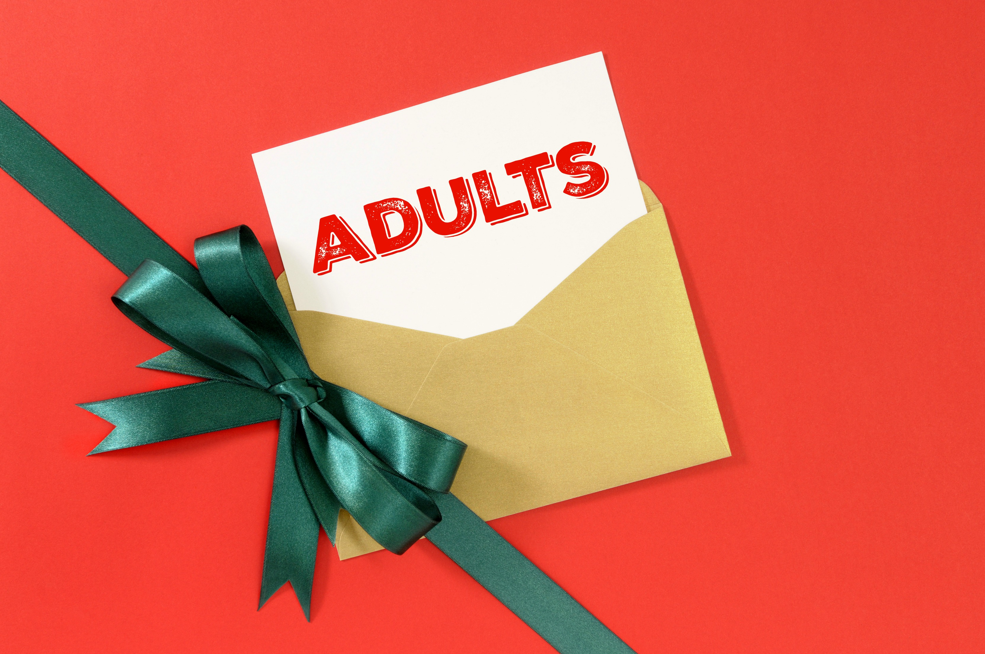2015 Holiday Gift Guide For Adults Funtastic Life