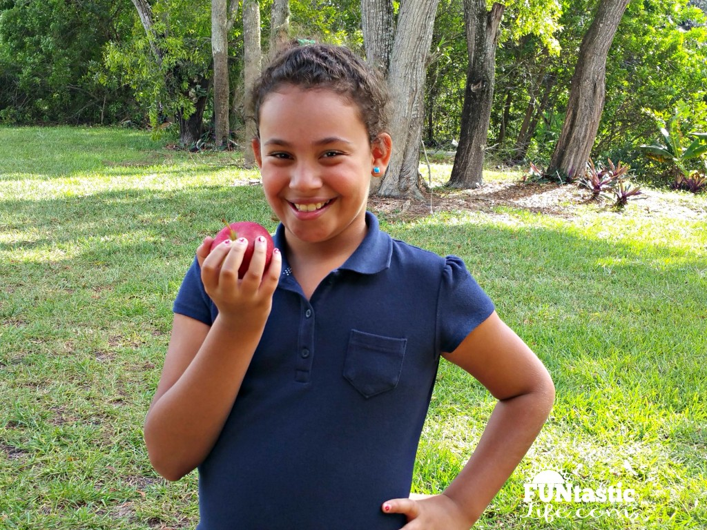 Eating a Wellsley Farms Empire apple