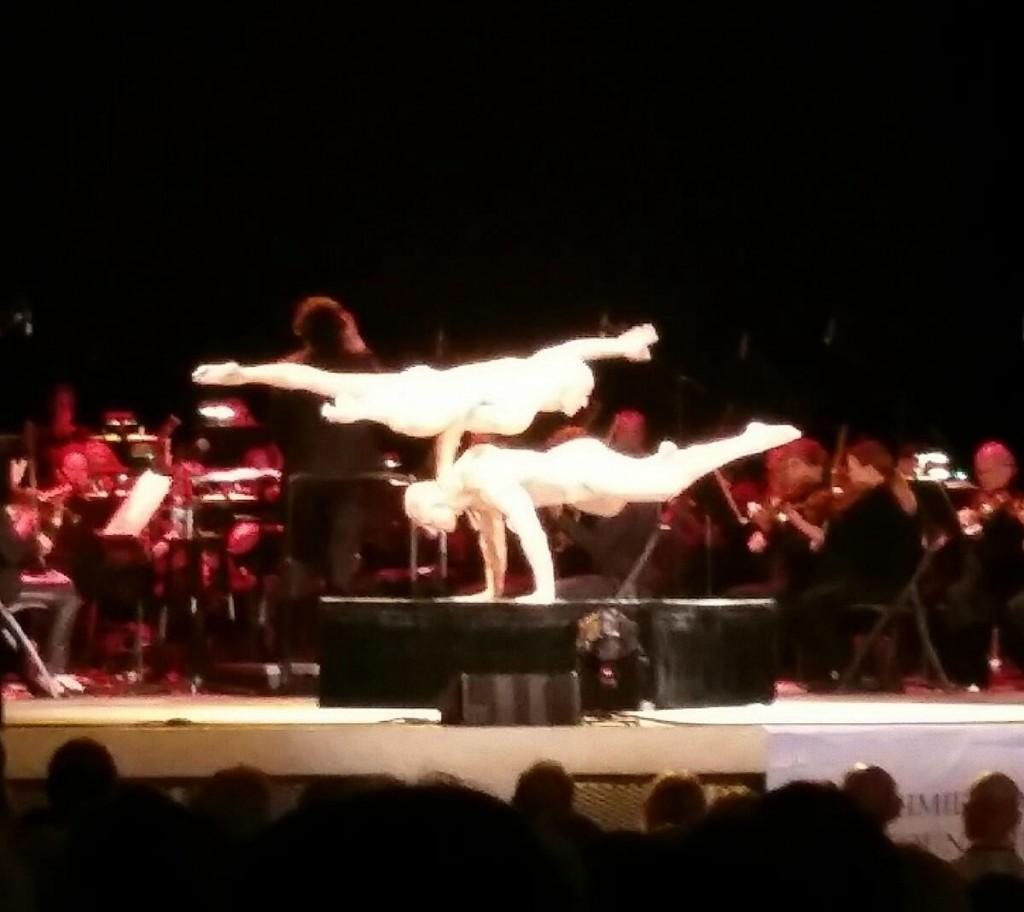 Cirque de la Symphonie Performance