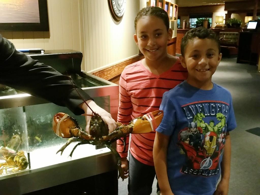 Lobster at Red Lobster