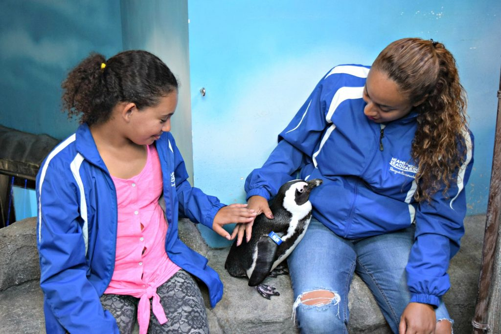 Daughter & mom touching a penguin