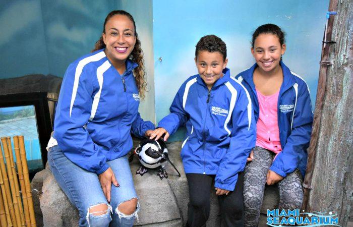 Miami Seaquarium Penguin Encounter Fun!