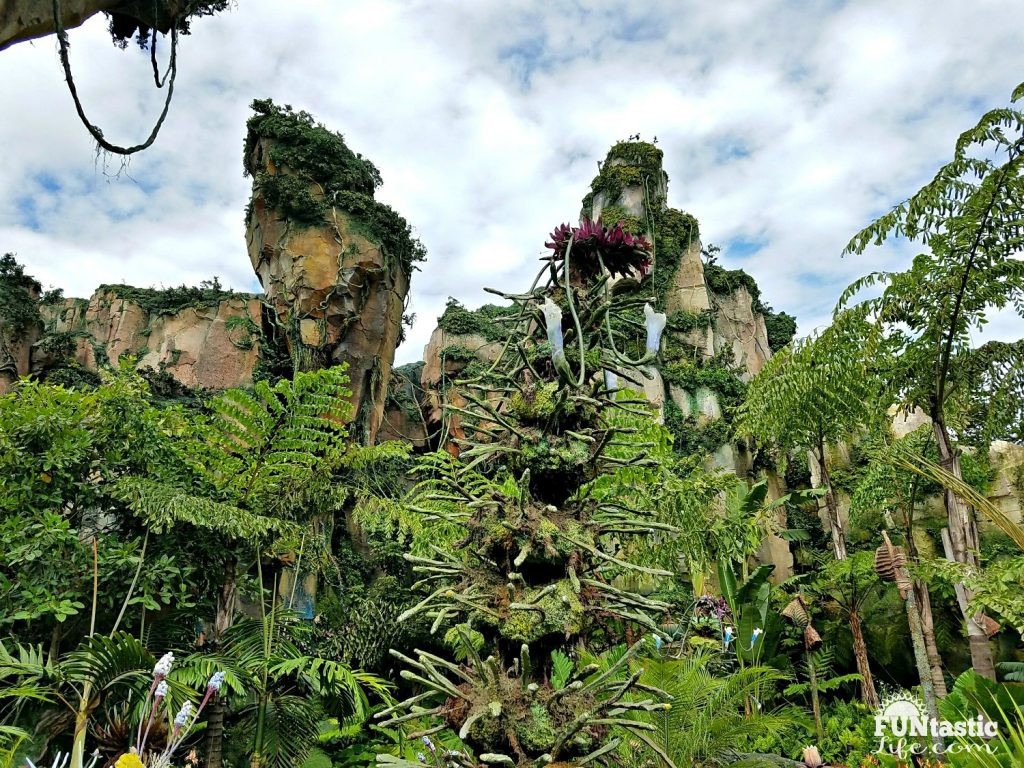 Pandora - The World of Avatar 8 R