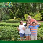 6 Funtastic Things to Do at Busch Gardens Tampa
