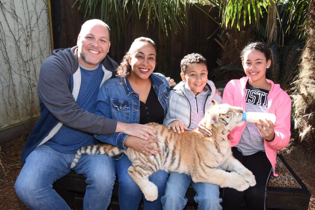 family bottle feeding a tiger