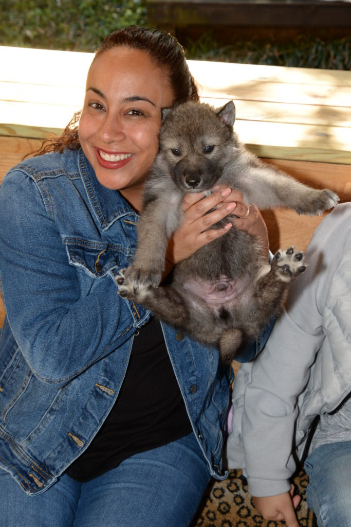 woman holding a wolf cub