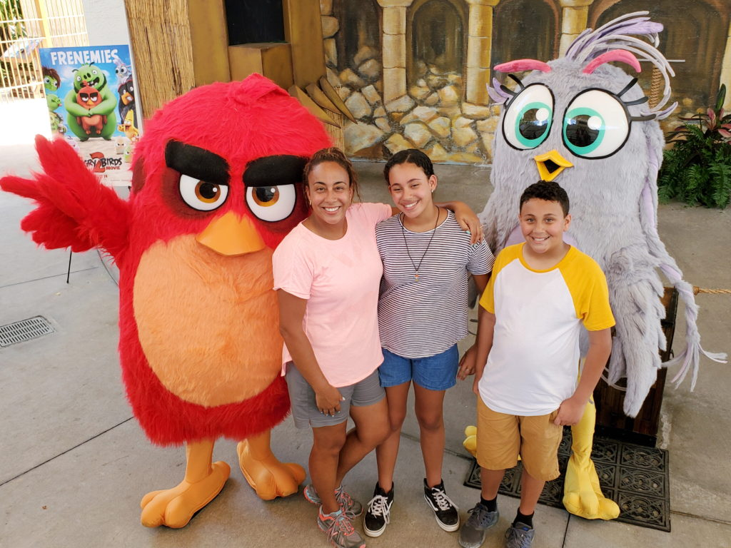 Family with Red and Silver from Angry Birds