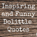 21 Inspiring and Funny Dolittle Quotes (2020)