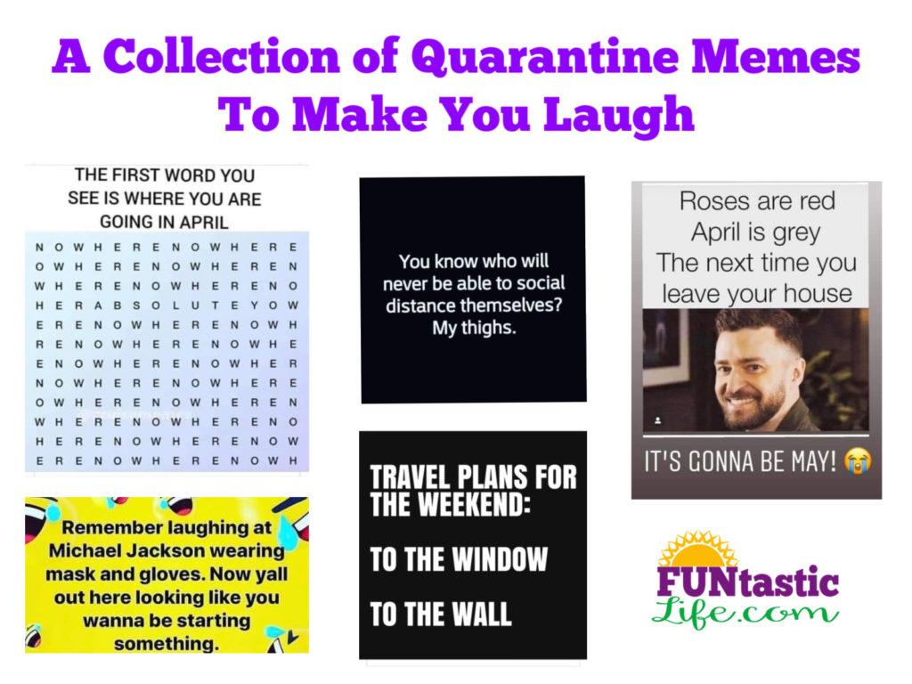 Quarantine Memes