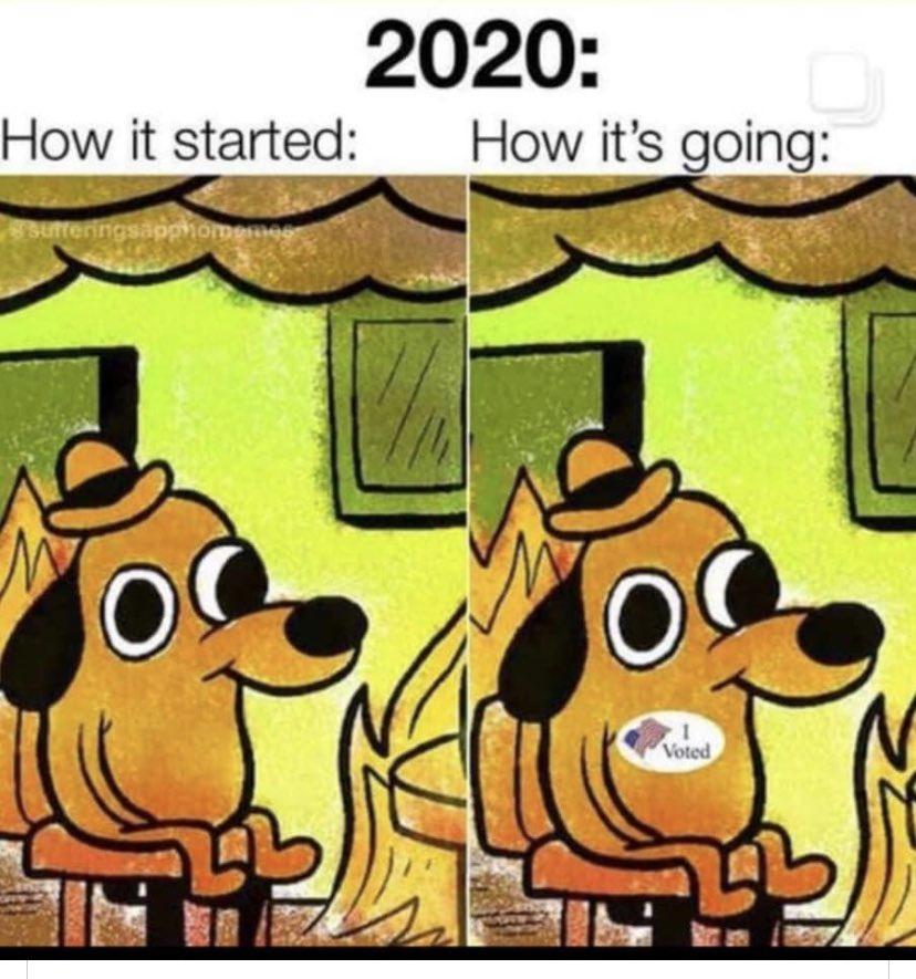 Post Election Meme