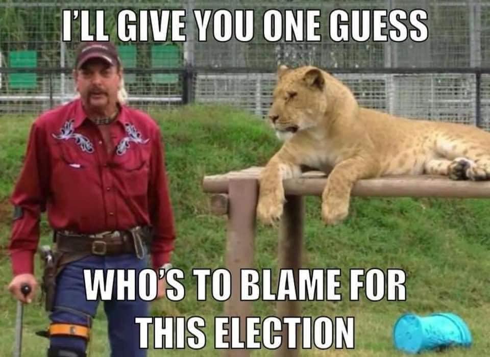 Tiger King Election Meme