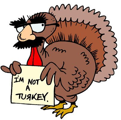 Turkey in a disguise