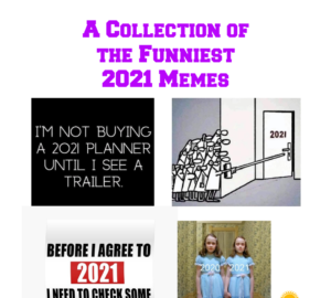 2021 Memes Round Up