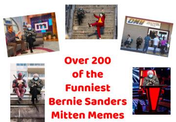 Collection of Bernie Sanders Mitten Memes
