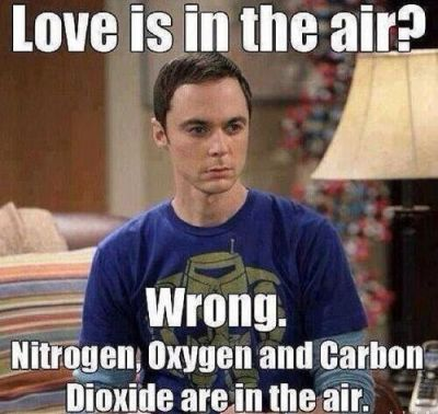big bang theory Valentine's Day Meme